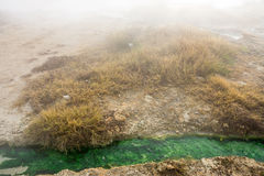 Den gröna färgen av varmvatten på källan i Rupiten, Bulgarien Royaltyfria Bilder