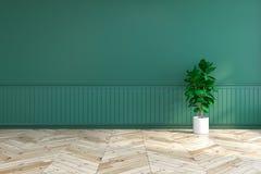 Den gröna inredesignen, tömmer rum med växten på den wood durken och mörker - den gröna väggen /3d framför Arkivfoto