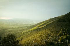 Den gröna kanten av kullen royaltyfri fotografi