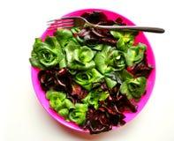 Den gröna leafen bantar begrepp med ny italiensk radicchio Royaltyfria Bilder