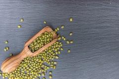 Den gröna mung bönan och den wood skopan för oliv på svart bakgrund av kritiserar eller stenar Royaltyfria Bilder