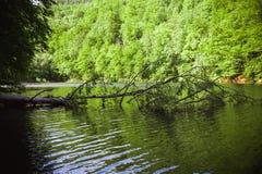 Den gröna sjön av Hamori i Lillafure nära Miskolc, Ungern Vårlandskap med solstrålar som täcker bergen Den sol- banan royaltyfri fotografi