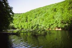Den gröna sjön av Hamori i Lillafure nära Miskolc, Ungern Vårlandskap med solstrålar som täcker bergen Den sol- banan royaltyfria foton