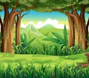 Den gröna skogen vektor illustrationer