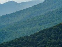 Den gröna skogen på bergssidan sträcker bort i lager tack vare som tänder royaltyfri bild