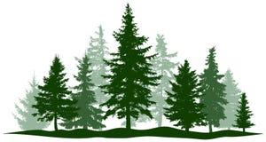 Den gröna skogevergreen sörjer, det isolerade trädet Parkera julgranen Individuella separata objekt royaltyfri illustrationer