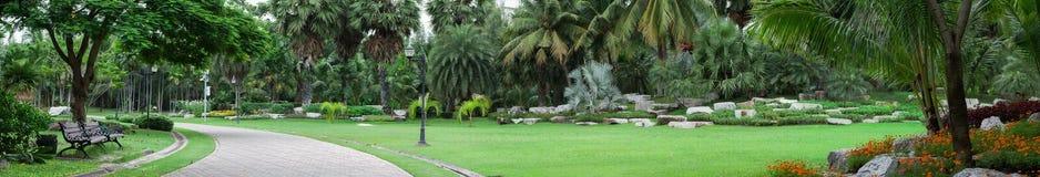 Den gröna staden parkerar Royaltyfri Fotografi