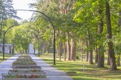 Den gröna staden parkerar i solig sommardag Lightings blommor, bänkar Royaltyfria Bilder