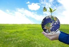 Den gröna världen med fjärilen och tjänstledigheter i man räcker, grön bakgrund, royaltyfria foton