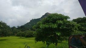 den gröna världen med regniga moln royaltyfria foton