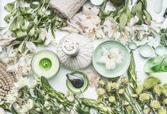 Den gröna växt- brunnsortinställningen med vattenbunken, blommor, stearinljuset, massage klumpa ihop sig, kosmetiska produkter, ö Arkivbild