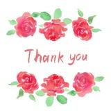 Den gröna vattenfärgen TACKAR DIG ord i enkel och elegant blom- krans med vårsidor, rosa färgblommor Royaltyfri Fotografi