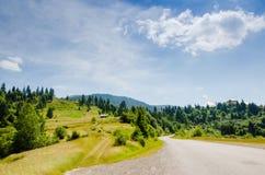 In den grünen Bergen Stockbilder