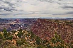 Den Grand Canyon Coloradofloden Arkivfoto