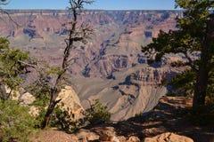 Den Grand Canyon `en s som bedövar djup, färg och mått Royaltyfria Foton