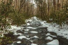 Den Great Smoky Mountains Oconaluftee floden Royaltyfri Foto