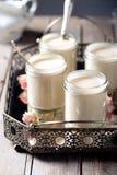 Den grekiska yoghurten i exponeringsglas skorrar på ett metalltappningmagasin Royaltyfri Fotografi