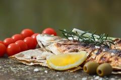 Den grillade fisken tjänade som på ett papper med tomaten Arkivbilder
