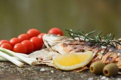 Den grillade fisken tjänade som på ett papper med tomaten Royaltyfri Foto