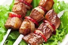 Den grillade kebaben (shashlik) spottar på. Royaltyfri Bild