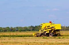 Gul harvester Arkivfoton