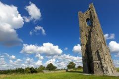 Den gula kyrktorn av abbotskloster av St Mary, klippning, ståndsmässiga Meath, Irland Arkivbilder