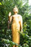 Den guld- bilden av Buddha plattforer i en buske arkivfoton