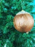 Den guld- bollen sörjer på trädet arkivbild