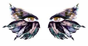 Den guld- bruna fen synar med makeup, mörker - göra grön, blått, och sepiavingar av fjärilen formar ögonskuggor arkivfoton
