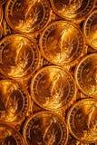 Den guld- dollaren myntar bakgrund Royaltyfri Fotografi