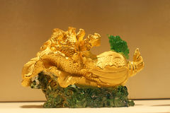 Den guld- kinakålen royaltyfri fotografi