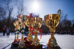 Den guld- koppmästerskapet royaltyfria bilder