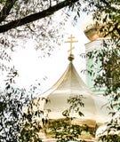 Den guld- kyrkliga kupolen av sikten för ortodox kyrka till och med träd Royaltyfri Fotografi