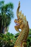 Den guld- nagaen i thai tempel Royaltyfria Foton
