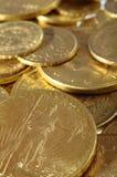 Den guld- raddan myntar för besparing Royaltyfria Bilder