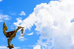 Den guld- svanen skulpterar ljus med stor blå himmel Arkivfoto