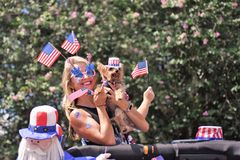 Den gulliga blondinen, den Yorkshire terriern och dockan är det täckte huvudet till tån med amerikanska flaggan royaltyfri bild