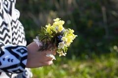 Den gulliga buketten av primulan för mamma i händerna av behandla som ett barn arkivfoto