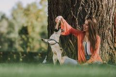 Den gulliga damen spelar med hennes hund utomhus arkivbild