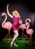 Den gulliga flickan i fuchsiapaljetter klär att vila och att dansa med tre stora flamingo på svart bakgrund royaltyfria foton
