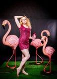 Den gulliga flickan i fuchsiapaljetter klär att vila och att dansa med tre stora flamingo på svart bakgrund fotografering för bildbyråer