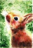 Den gulliga fluffiga bruna kaninen ser en vit maskros på en grön bakgrund som målas av händer med vattenfärgen, affischen, illust Royaltyfri Fotografi
