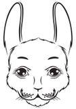 Den gulliga kaninen tystar ned Arkivbild