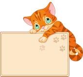 Den gulliga kattungen inviterar eller affischerar Royaltyfria Foton