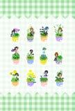 Den gulliga lilla blomkrukan Royaltyfria Bilder