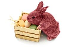 Den gulliga lilla easter kaninen med träasken som var full av easter, färgade Royaltyfri Foto