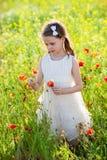 Den gulliga lilla flickan i en äng med den lösa våren blommar Royaltyfri Foto