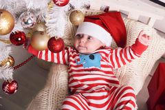 Den gulliga lilla jultomten behandla som ett barn att posera bredvid julgranen på slags tvåsittssoffahemmet med garnering för det Arkivbilder