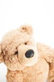 Den gulliga nallebjörnen ser upp Royaltyfri Bild