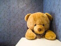 Den gulliga nallebjörnen sitter på stolen framme av att äta middag tabellen Gör det att verka som att vänta på den favorit- maträ royaltyfri fotografi